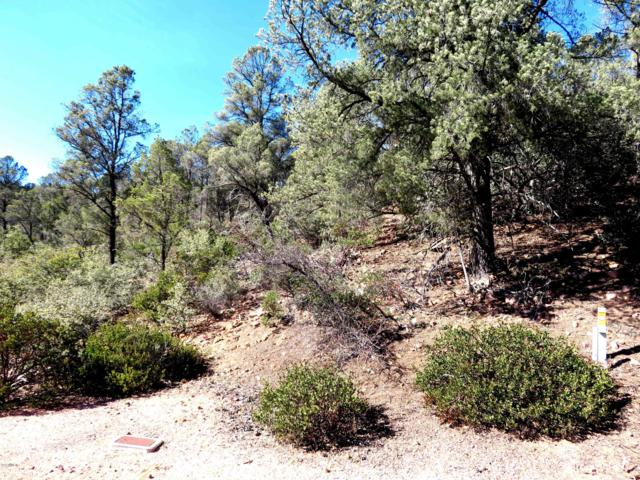 1900 E Rainbow Trail, Payson, AZ 85541 (MLS #5876875) :: Brett Tanner Home Selling Team