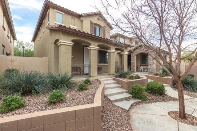 11423 W St John Road, Surprise, AZ 85378 (MLS #5876910) :: Keller Williams Realty Phoenix