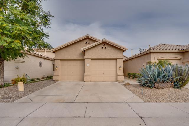 4918 W Behrend Drive, Glendale, AZ 85308 (MLS #5876914) :: The W Group