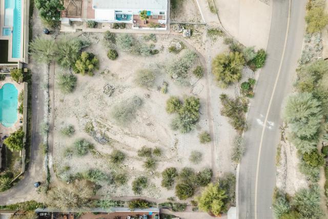 1717 E Myrtle Avenue, Phoenix, AZ 85020 (MLS #5876951) :: Team Wilson Real Estate