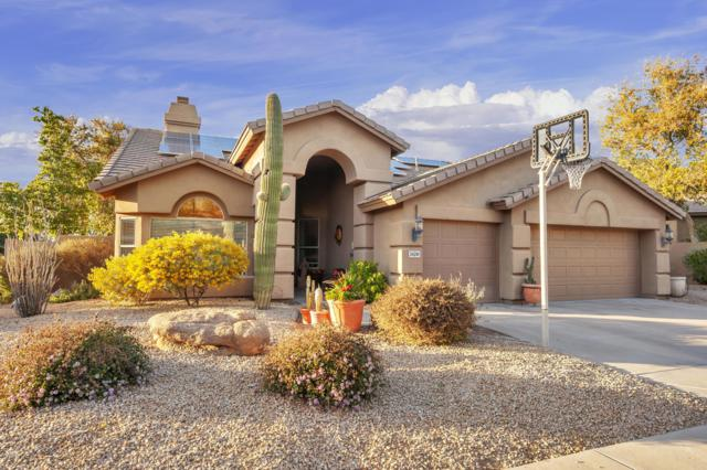 26210 N 46TH Street, Phoenix, AZ 85050 (MLS #5876980) :: Yost Realty Group at RE/MAX Casa Grande
