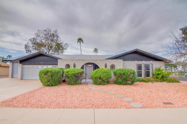764 S Racine, Mesa, AZ 85206 (MLS #5877007) :: The W Group