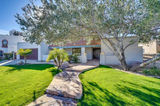 12038 S Tonalea Drive, Phoenix, AZ 85044 (MLS #5877080) :: The Everest Team at My Home Group