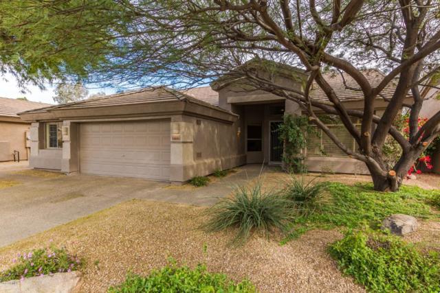 15611 N 65TH Street, Scottsdale, AZ 85254 (MLS #5877085) :: My Home Group