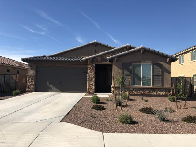 4216 S 186TH Avenue, Goodyear, AZ 85338 (MLS #5877146) :: Kortright Group - West USA Realty