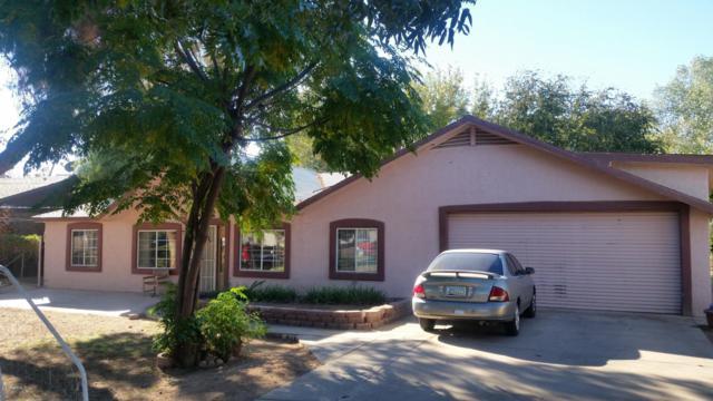 6334 N 64TH Drive, Glendale, AZ 85301 (MLS #5877296) :: Yost Realty Group at RE/MAX Casa Grande