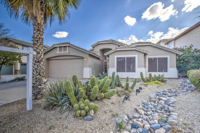 29473 N Candlewood Drive, San Tan Valley, AZ 85143 (MLS #5877303) :: Yost Realty Group at RE/MAX Casa Grande