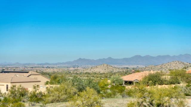 11390 S San Roberto Drive, Goodyear, AZ 85338 (MLS #5877323) :: CC & Co. Real Estate Team