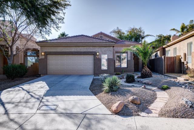 1243 E Eugie Avenue, Phoenix, AZ 85022 (MLS #5877351) :: CC & Co. Real Estate Team