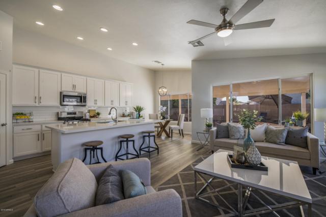 3517 E Kerry Lane, Phoenix, AZ 85050 (MLS #5877400) :: Arizona 1 Real Estate Team
