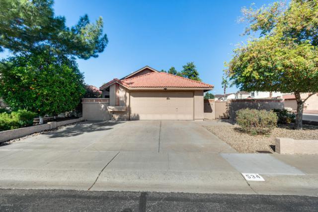 534 E Taro Lane, Phoenix, AZ 85024 (MLS #5877428) :: RE/MAX Excalibur