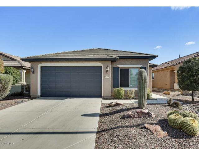 21677 N 261ST Avenue, Buckeye, AZ 85396 (MLS #5877439) :: The Laughton Team