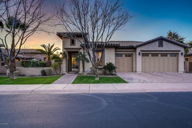 7654 S La Corta Drive, Tempe, AZ 85284 (MLS #5877458) :: The W Group