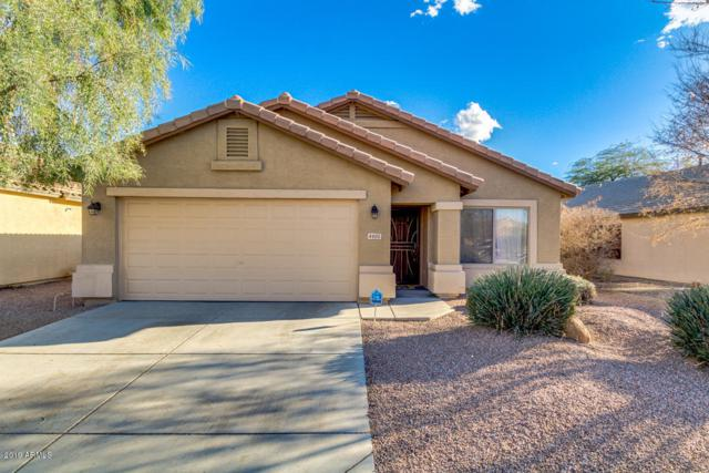4605 W Fawn Drive, Laveen, AZ 85339 (MLS #5877475) :: The Property Partners at eXp Realty