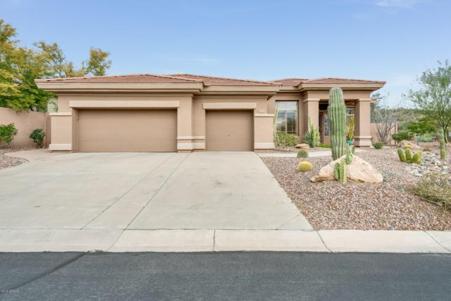42017 N Anthem Heights Drive, Anthem, AZ 85086 (MLS #5877631) :: Yost Realty Group at RE/MAX Casa Grande