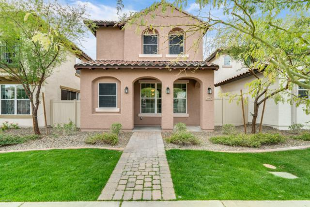 28935 N 124TH Drive, Peoria, AZ 85383 (MLS #5877638) :: The Results Group