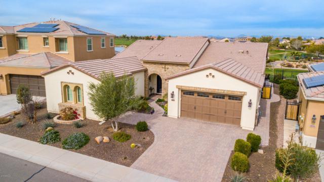 1668 E Verde Boulevard, San Tan Valley, AZ 85140 (MLS #5877649) :: Santizo Realty Group