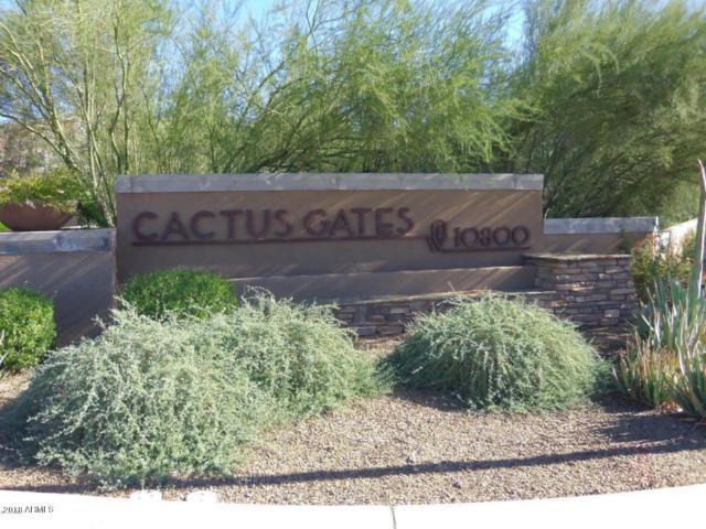 10800 E Cactus Road, Scottsdale, AZ 85259 (MLS #5877742) :: RE/MAX Excalibur