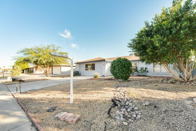 3803 W Crocus Drive, Phoenix, AZ 85053 (MLS #5877903) :: Yost Realty Group at RE/MAX Casa Grande