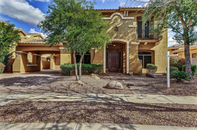 3799 S Skyline Drive, Gilbert, AZ 85297 (MLS #5877925) :: The W Group