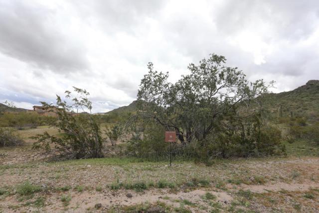 16561 W Santa Loretta Drive, Goodyear, AZ 85338 (MLS #5877993) :: Nate Martinez Team
