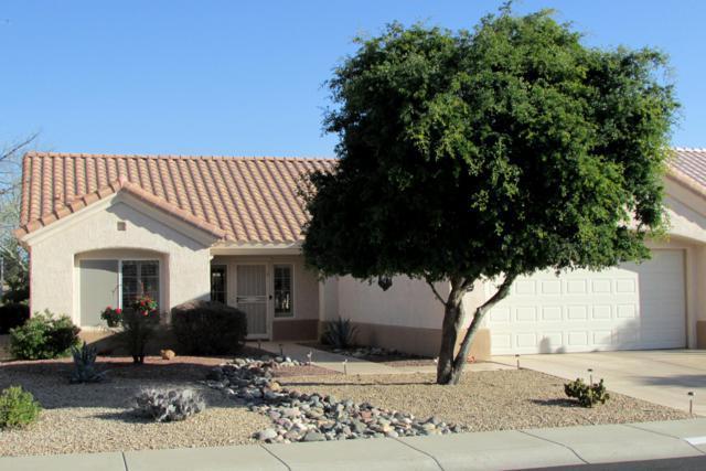 14224 W Wagon Wheel Drive, Sun City West, AZ 85375 (MLS #5878162) :: The W Group