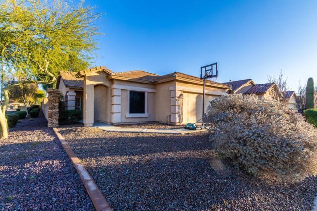 2576 W Amber Sun Drive, Phoenix, AZ 85085 (MLS #5878187) :: Yost Realty Group at RE/MAX Casa Grande