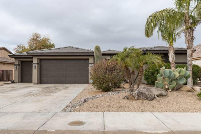 16142 W Glenrosa Avenue, Goodyear, AZ 85395 (MLS #5878259) :: Kortright Group - West USA Realty