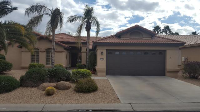16187 W Mulberry Drive, Goodyear, AZ 85395 (MLS #5878282) :: The W Group