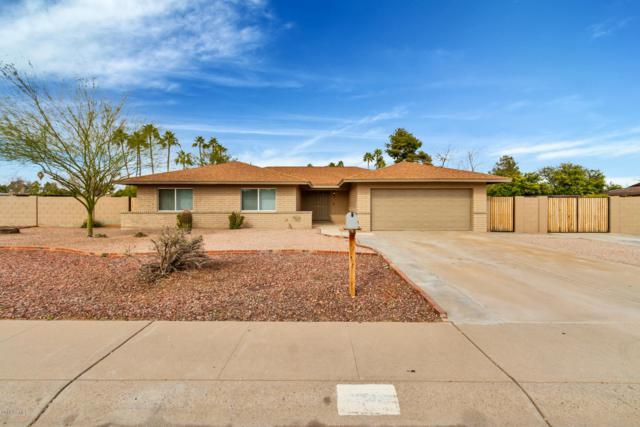 4242 E Desert Cove Avenue, Phoenix, AZ 85028 (MLS #5878379) :: The Luna Team
