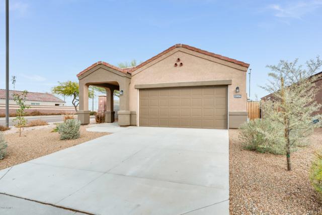 29956 W Whitton Avenue, Buckeye, AZ 85396 (MLS #5878381) :: Lucido Agency