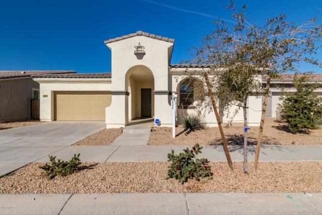 22538 E Tierra Grande, Queen Creek, AZ 85142 (MLS #5878395) :: CC & Co. Real Estate Team