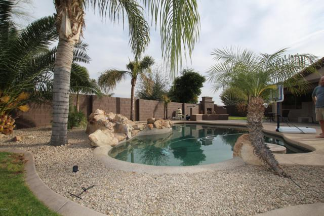 3905 N 144TH Drive, Goodyear, AZ 85395 (MLS #5878423) :: The Luna Team