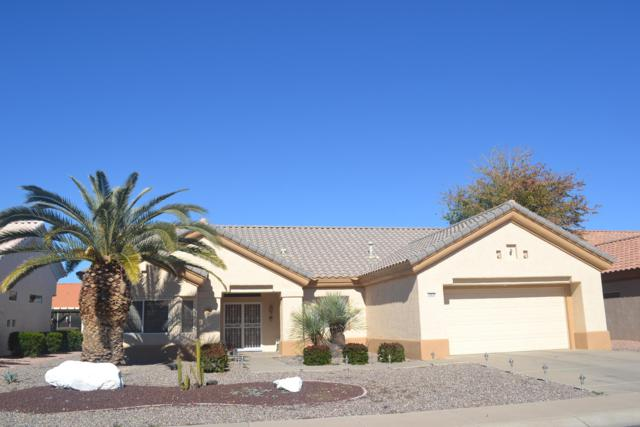 14034 W Territorial Lane, Sun City West, AZ 85375 (MLS #5878437) :: The W Group