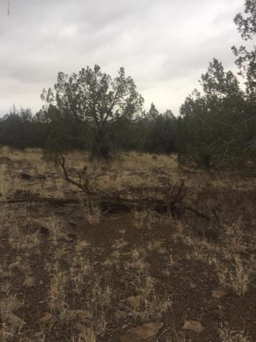 ... W Camp Road, Ash Fork, AZ 86320 (MLS #5878476) :: Openshaw Real Estate Group in partnership with The Jesse Herfel Real Estate Group