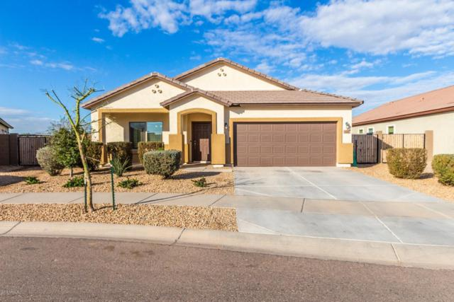 5332 S 34TH Drive, Phoenix, AZ 85041 (MLS #5878486) :: Yost Realty Group at RE/MAX Casa Grande
