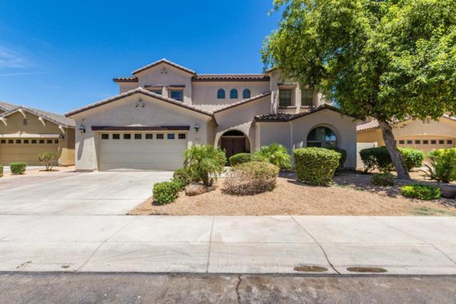 11724 W Rio Vista Lane, Avondale, AZ 85323 (MLS #5878537) :: CC & Co. Real Estate Team