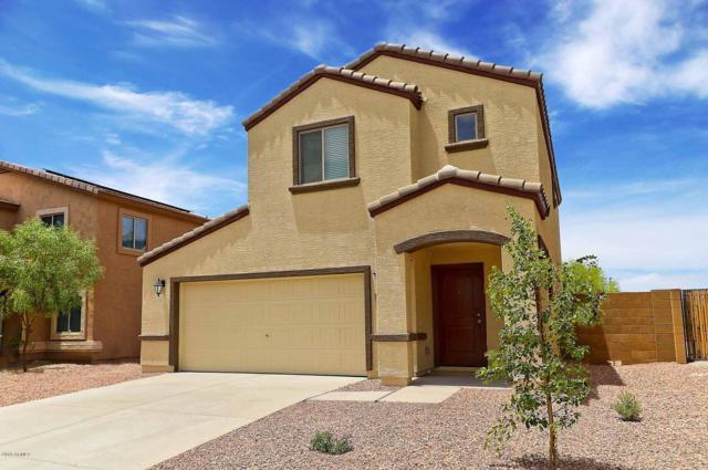 8643 S 253RD Avenue, Buckeye, AZ 85326 (MLS #5878548) :: The Results Group