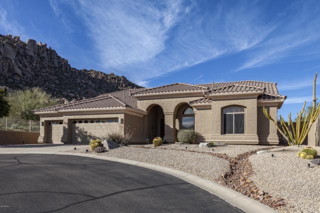 11506 E Desert Holly Drive, Scottsdale, AZ 85255 (MLS #5878557) :: The Property Partners at eXp Realty