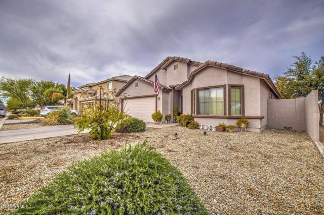 2762 E Desert Rose Trail, San Tan Valley, AZ 85143 (MLS #5878648) :: Yost Realty Group at RE/MAX Casa Grande