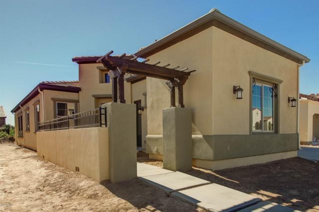 139 E Orange Blossom Path, San Tan Valley, AZ 85140 (MLS #5878748) :: Yost Realty Group at RE/MAX Casa Grande