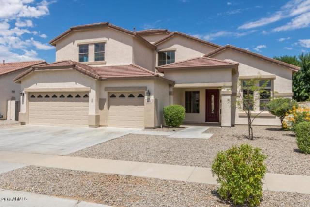 8606 W Carole Lane, Glendale, AZ 85305 (MLS #5878805) :: CC & Co. Real Estate Team