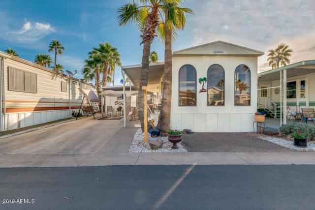 443 S Seneca Drive, Apache Junction, AZ 85119 (MLS #5879016) :: Yost Realty Group at RE/MAX Casa Grande