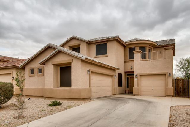 20505 N Santa Cruz Drive, Maricopa, AZ 85138 (MLS #5879045) :: Yost Realty Group at RE/MAX Casa Grande