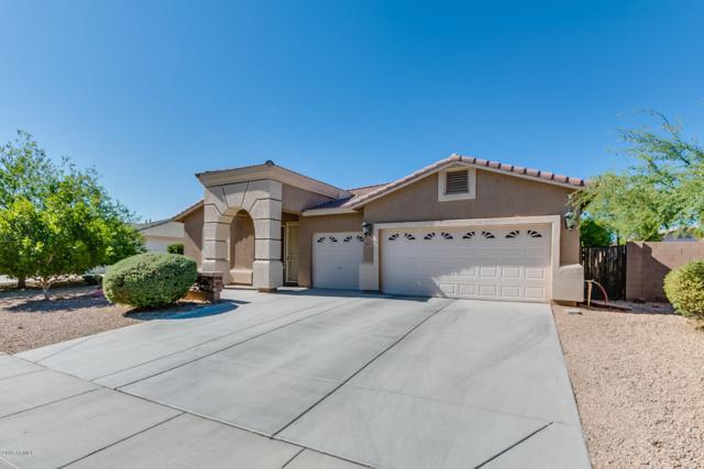 18557 W Onyx Avenue, Waddell, AZ 85355 (MLS #5879057) :: The Pete Dijkstra Team