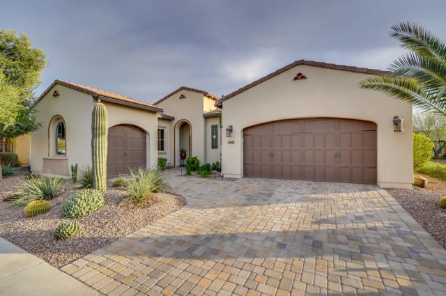 1681 E Maygrass Lane, San Tan Valley, AZ 85140 (MLS #5879144) :: Santizo Realty Group