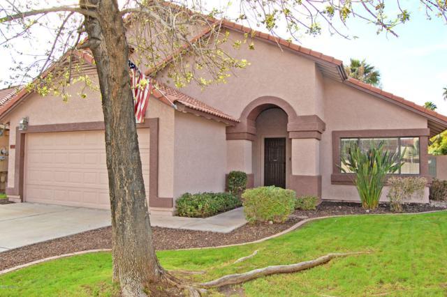 18656 N 70TH Avenue, Glendale, AZ 85308 (MLS #5879169) :: Keller Williams Realty Phoenix
