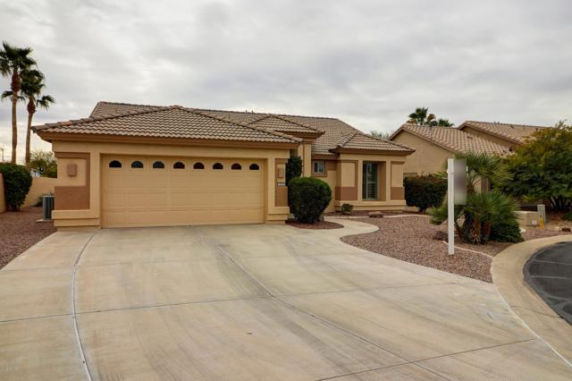 15521 W Catalina Drive, Goodyear, AZ 85395 (MLS #5879170) :: The Everest Team at My Home Group