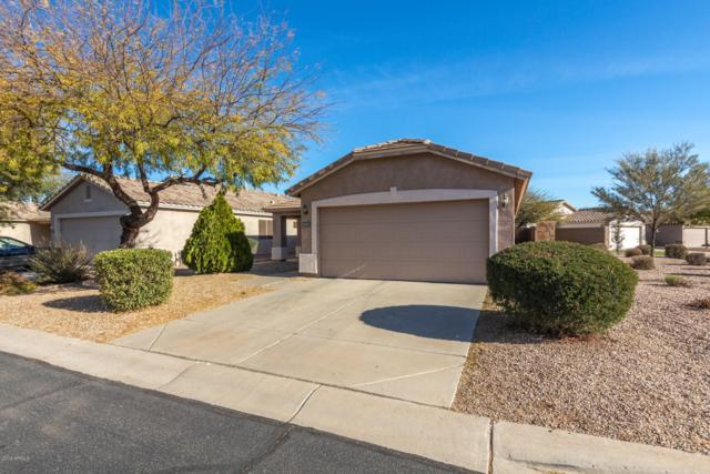 30141 N Coral Bean Drive, San Tan Valley, AZ 85143 (MLS #5879221) :: Yost Realty Group at RE/MAX Casa Grande