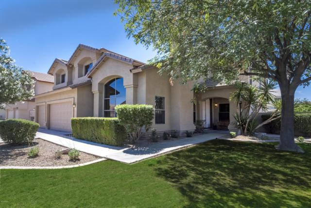 845 E Gail Drive, Gilbert, AZ 85296 (MLS #5879270) :: Yost Realty Group at RE/MAX Casa Grande
